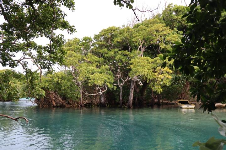 Vanuatu – partI